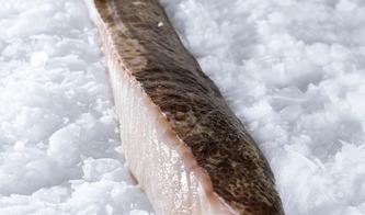Maxi Pesca - Poisson frais